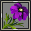 icon_5044.png