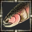 icon_5594.png