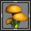 icon_5004.png