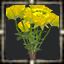 icon_5606.png