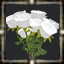 icon_5614.png