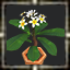 icon_5616.png