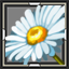 icon_5283.png