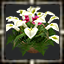 icon_5601.png