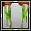 icon_6215.png