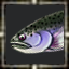 icon_5597.png