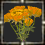 icon_5617.png