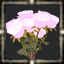 icon_5615.png