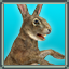 icon_3692.png