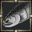 icon_5596.png